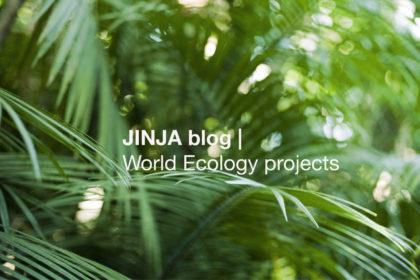 JINJA blog ❛ World ECOLOGY projects ❜