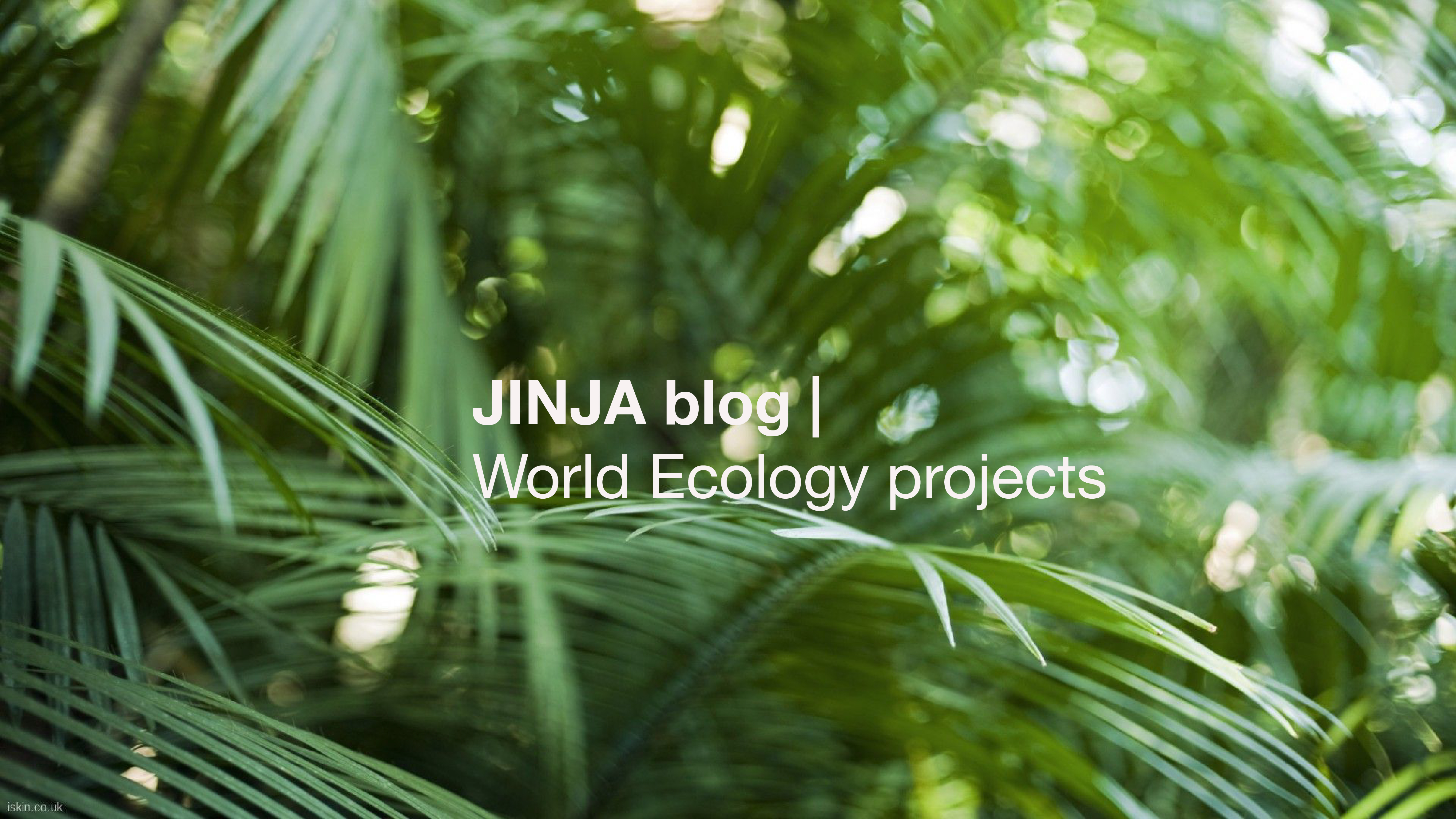 JINJA blog ❛ World ECOLOGY projects ❜